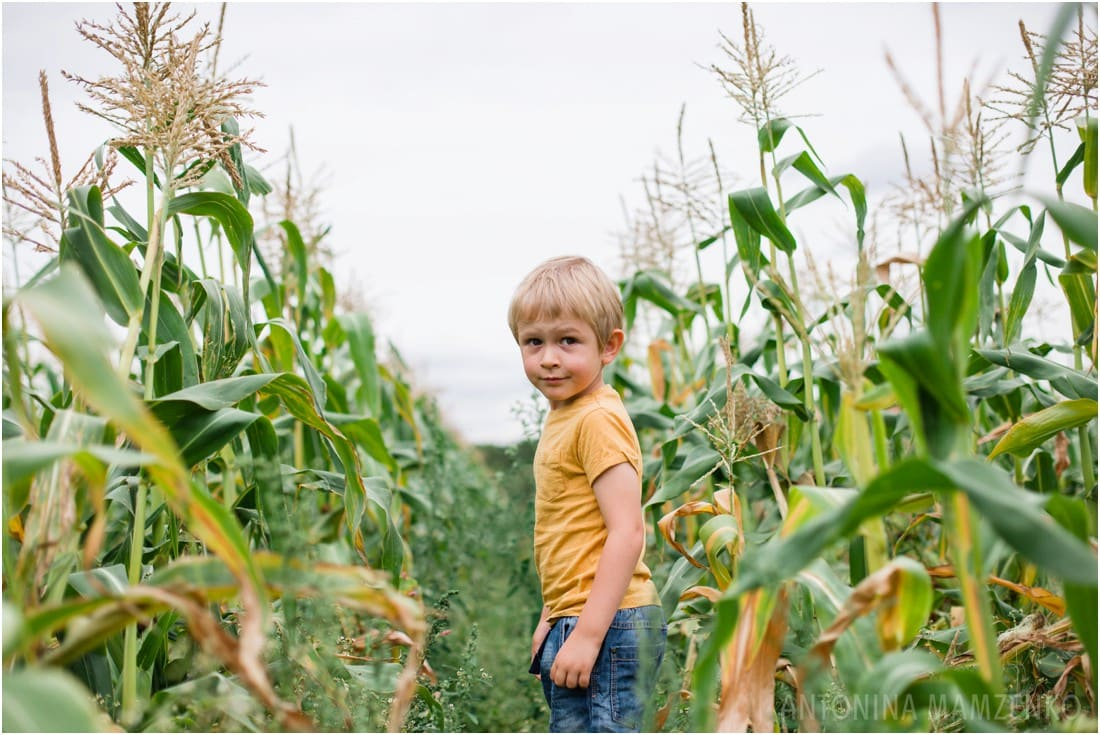 family photographer surrey - photoshoot in a corn field