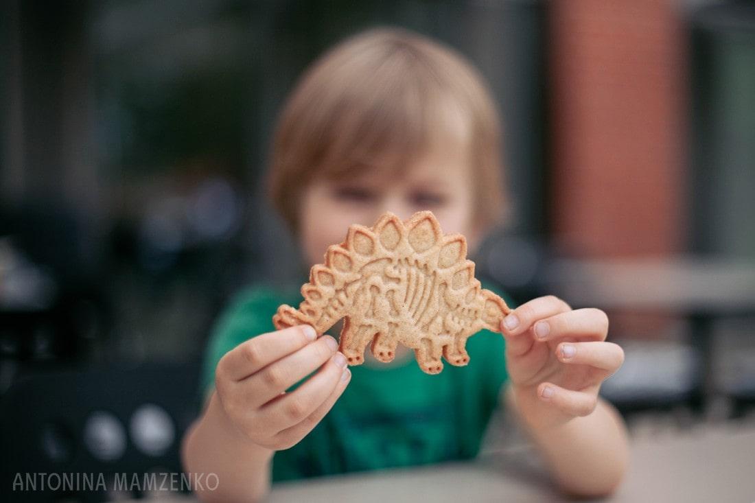 dinosaur cookie at horniman museum
