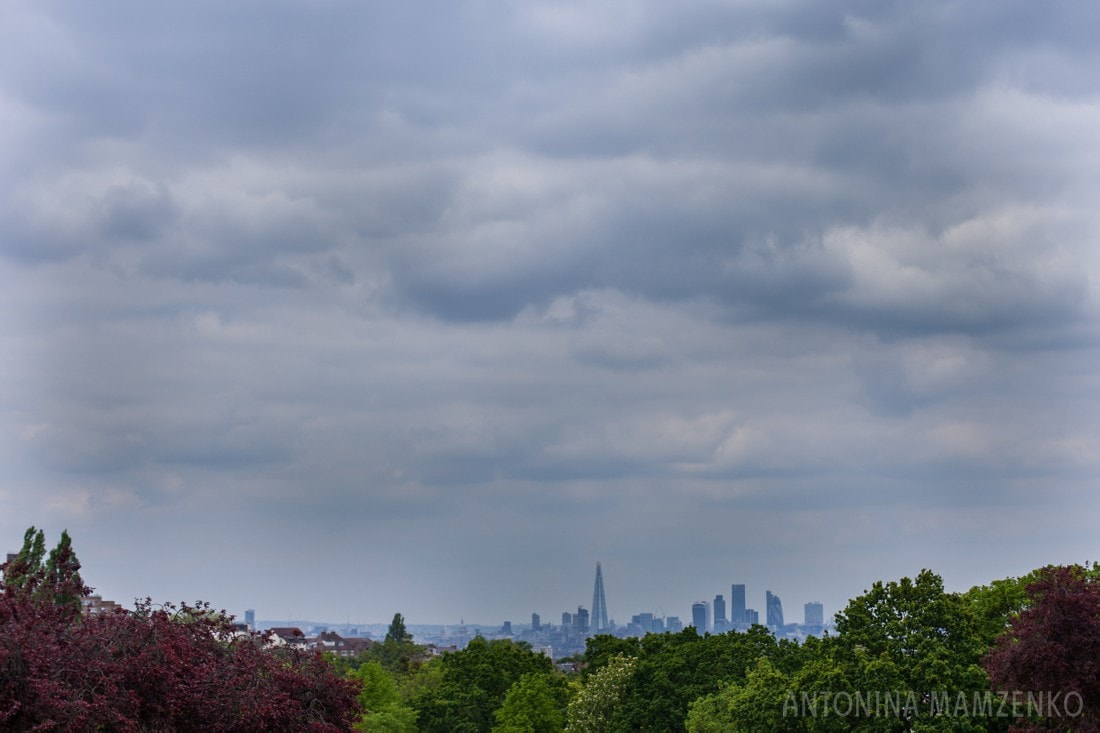 view of London from Horniman gardens