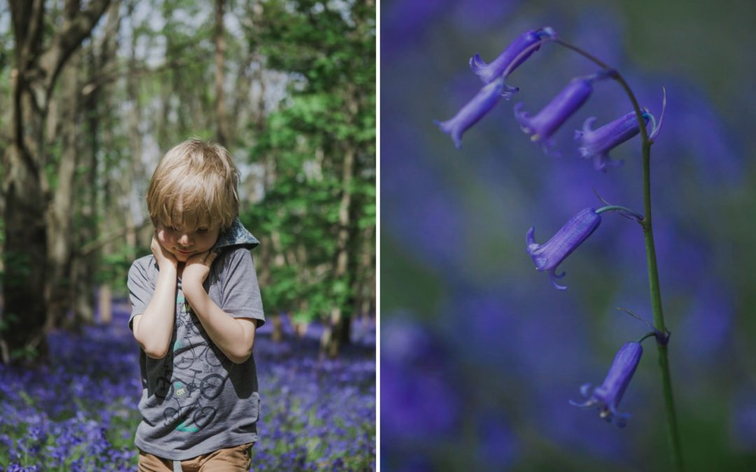 How to Photograph Your Kids in Bluebells
