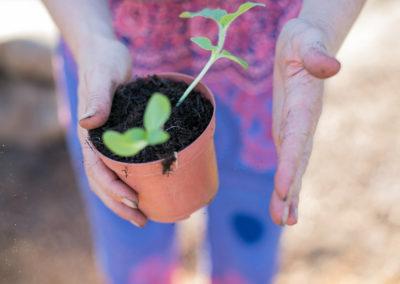 Lifestyle allotment gardening photoshoot in Surrey